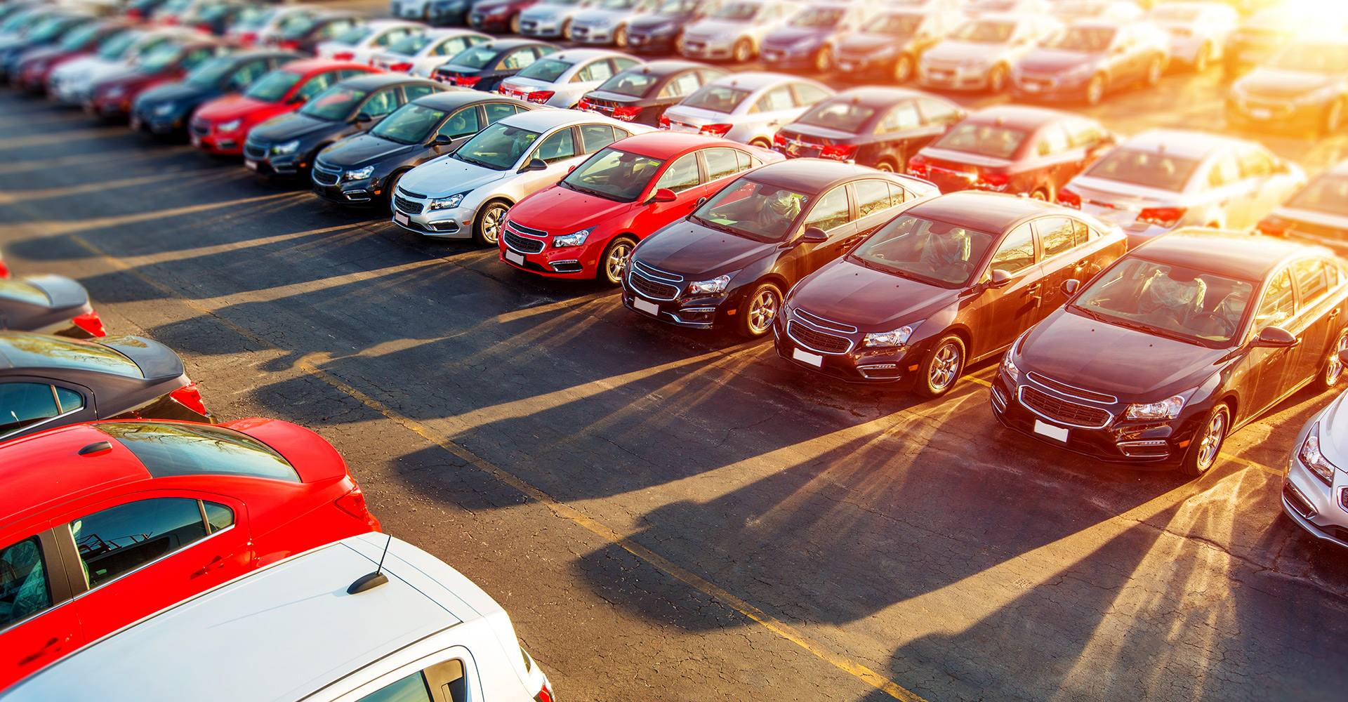 the best collection of used cars